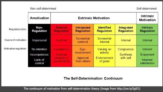 self determintaion table